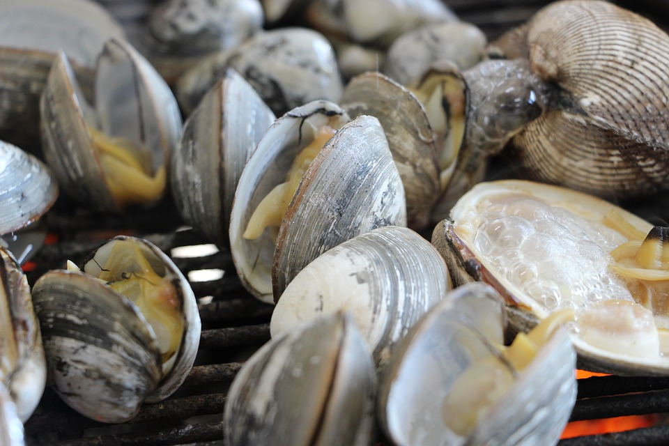 Clam, Seafood, Cooking, Grilled, Food