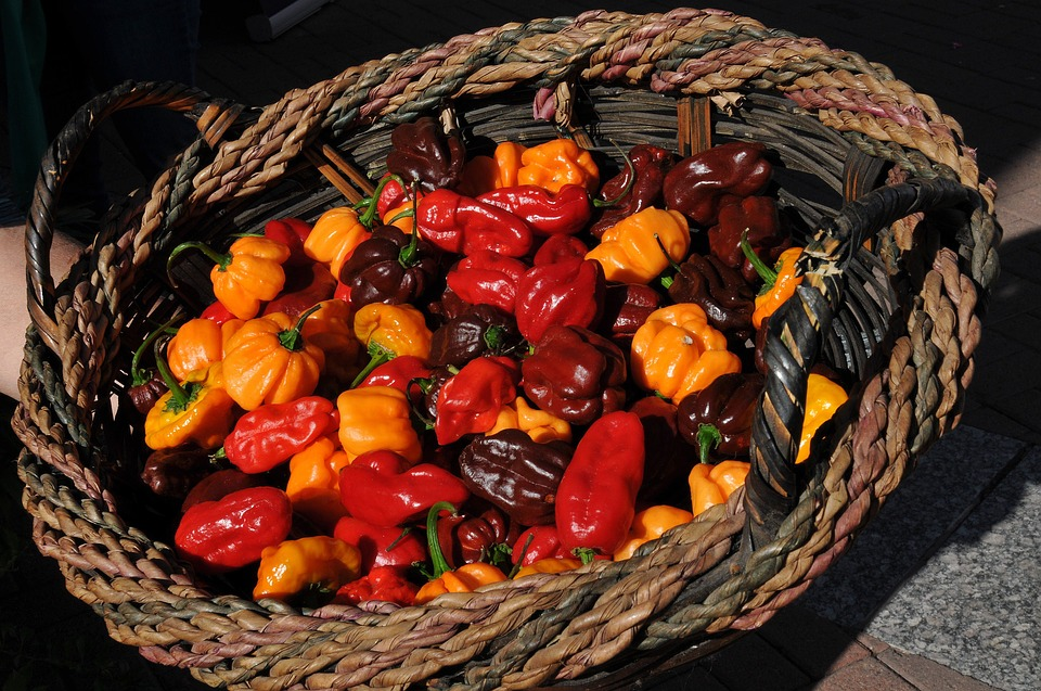 Peppers, Chilis, Chili Peppers, Cooking, Spicy, Food
