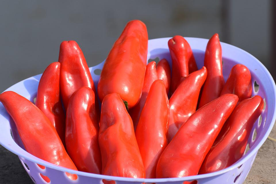 Chilies, Red, Chili, Food, Pepper, Cooking, Hot, Spice