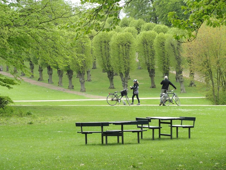Landscape, Copenhagen, Denmark, Park, Trees, Grass