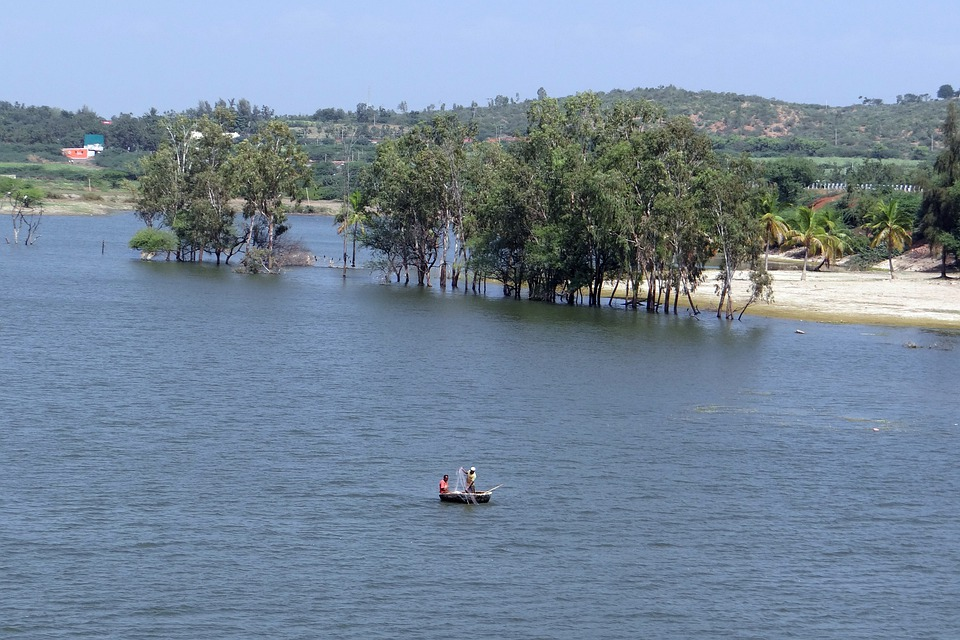 Coracle, Fishing, Dragnet, Krishna River, Backwaters