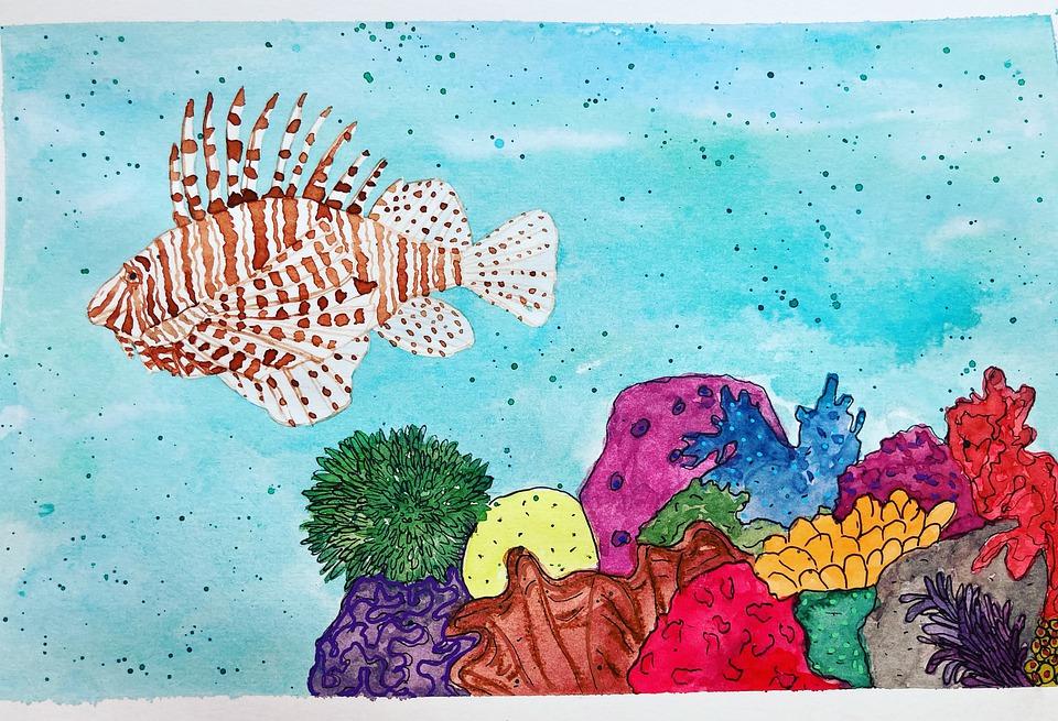 Lionfish, Fish, Coral
