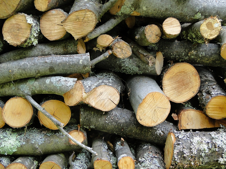 Wood, Cord Wood, Logs, Firewood, Stack, Stacked, Pile