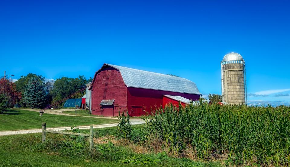 Vermont, Corn, Cornfield, Landscape, Scenic, Farm, Barn