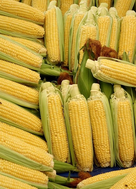 Corn, Corn On The Cob, Vegetables, Food