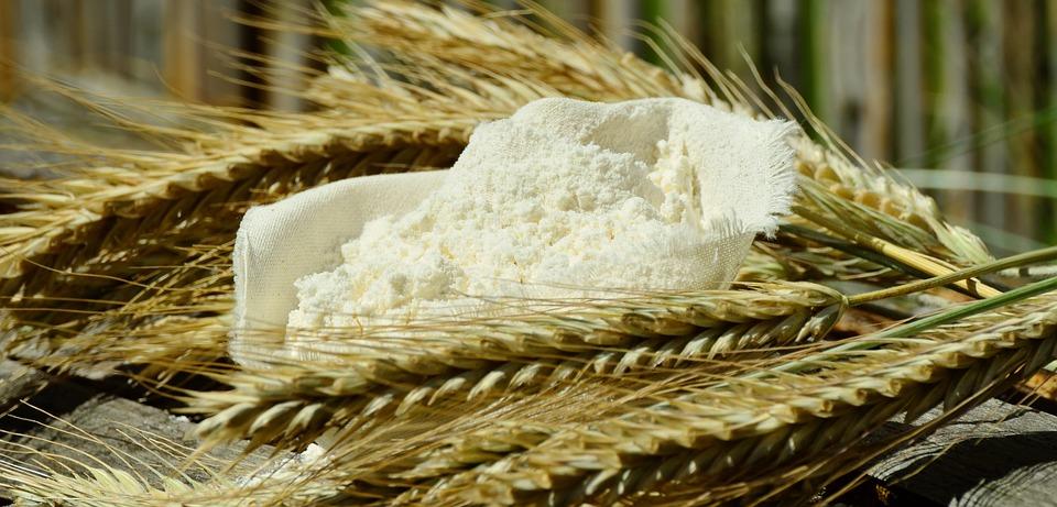 Flour, Cereals, Spike, Corn Stalks, Nutrition, Grind