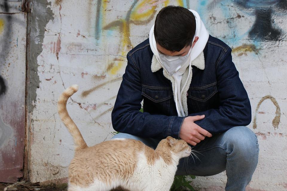Coronavirus, Teenager, Corona, Cat, Pandemic