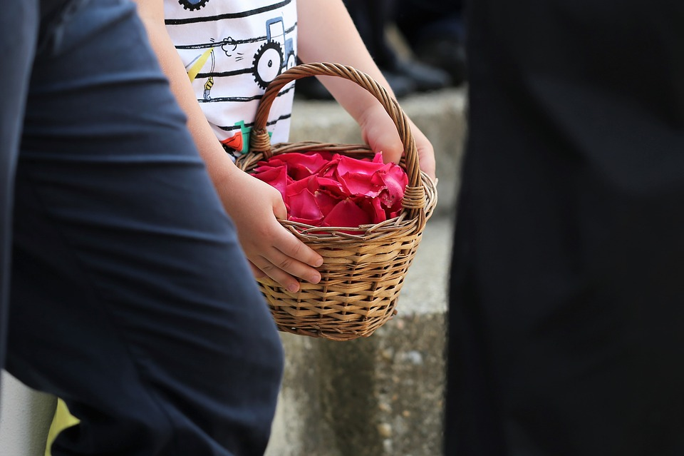Boy, Basket With Red Rose Petals, Corpus Christi Feast