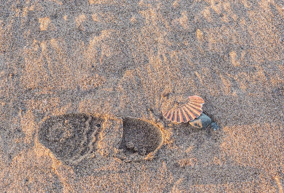 Footprints, Path, Walker, Beach, Sand, Costa, Pilgrim