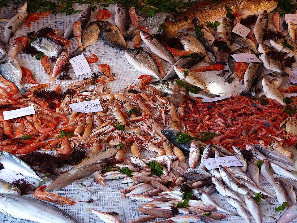 Fish, Market, Sicily, Palermo, Costs, Sea, Power, Eat