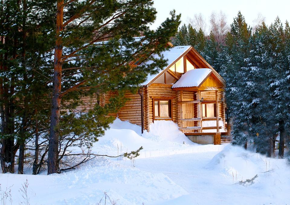 Cottage, Pine, Nature