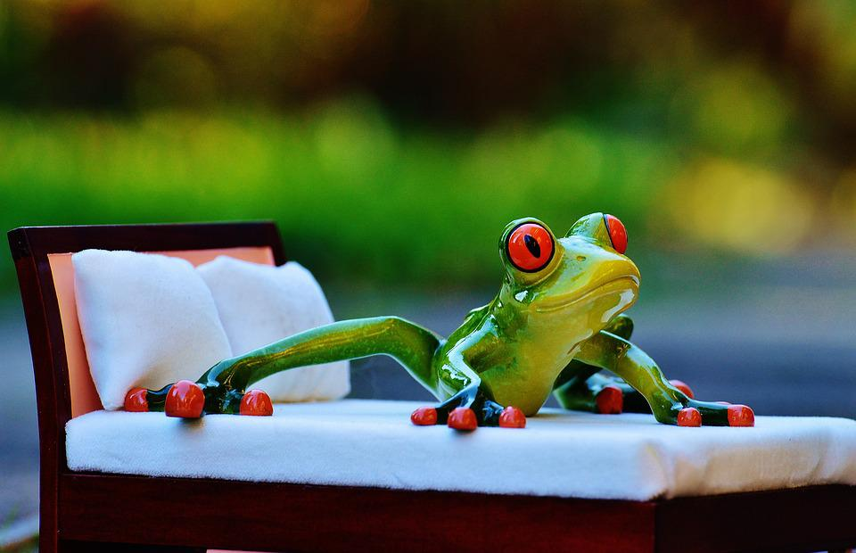 Frog, Bed, Fig, Funny, Cute, Love, Concerns, Couch