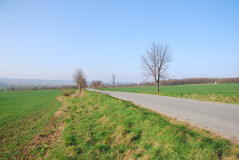 Road, Country, Field