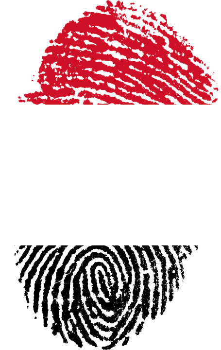 Yemen, Flag, Fingerprint, Country, Pride, Identity