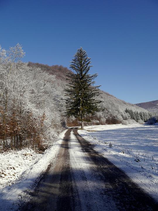 Slovakia, Tree, Path, Snow, Winter, Country, Nature