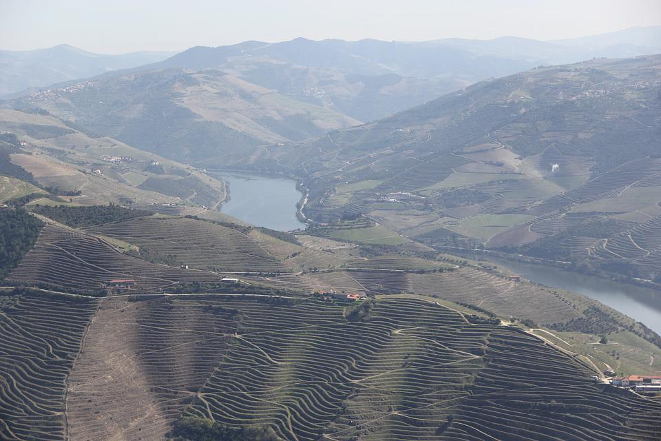 Douro, Wine, Portugal, Valley, Country, Mountains
