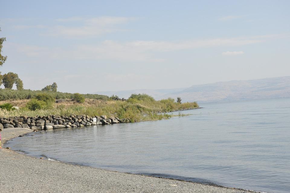 Lake, Coast, Nature, Water, Countryside, Scenery