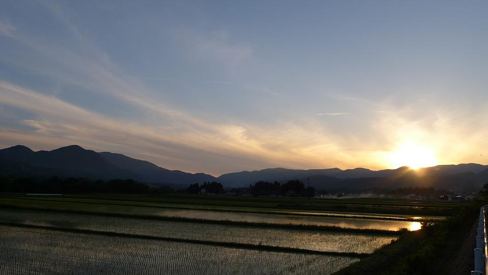 Countryside, Yamada's Rice Fields