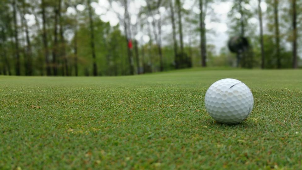 Green, Grass, Golf, Ball, Course, Golfing, Leisure