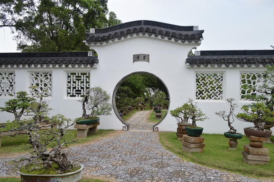 Courtyard, Chinese Style, Bonsai