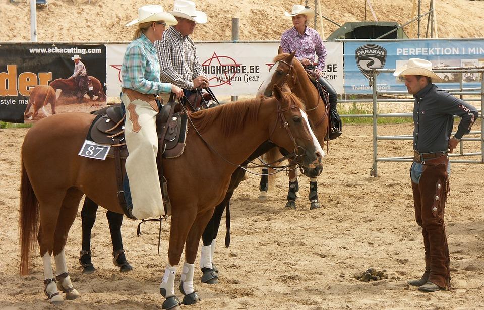 Horse, Cowboy, Riders, Rider