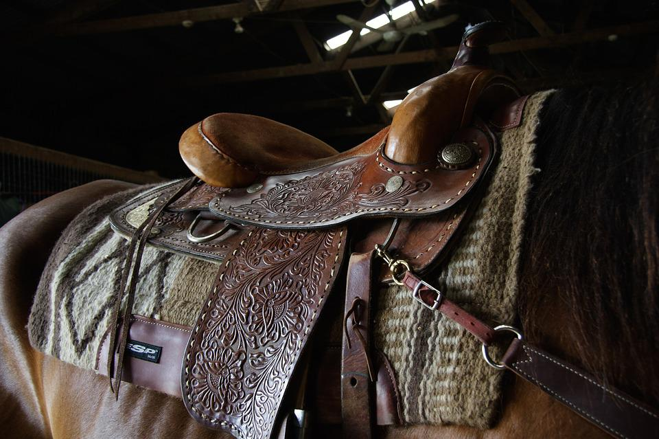 Western, Saddle, Ride, Stall, Horse, Cowgirl, Cowboy