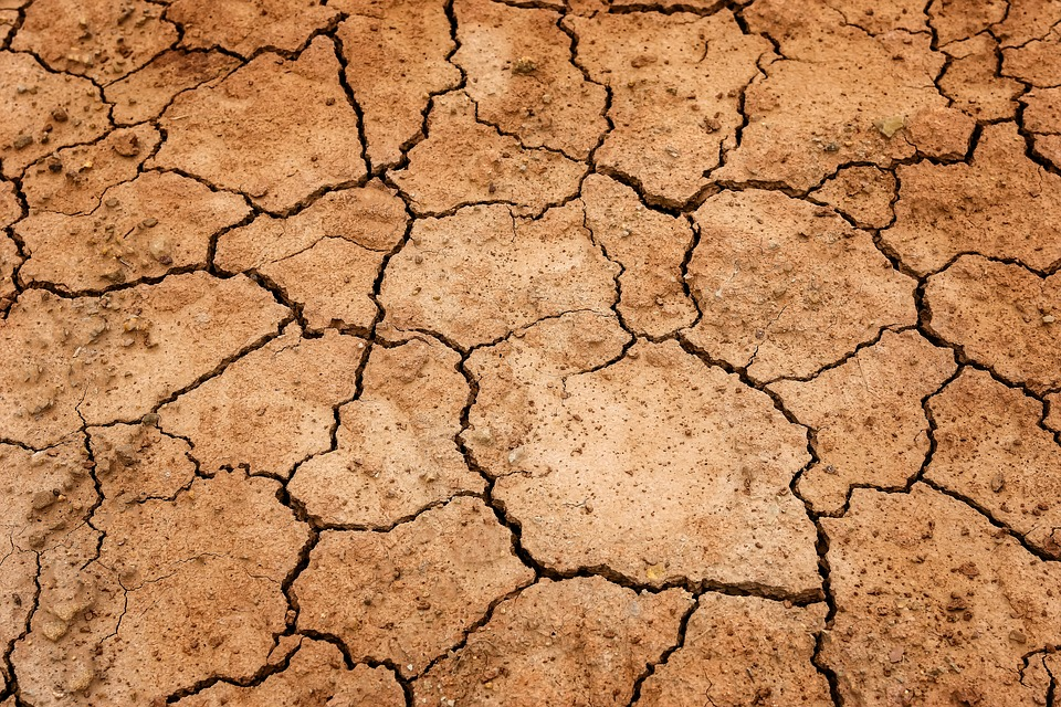 Earth, Ground, Drought, Dehydrated, Cracked, Nature