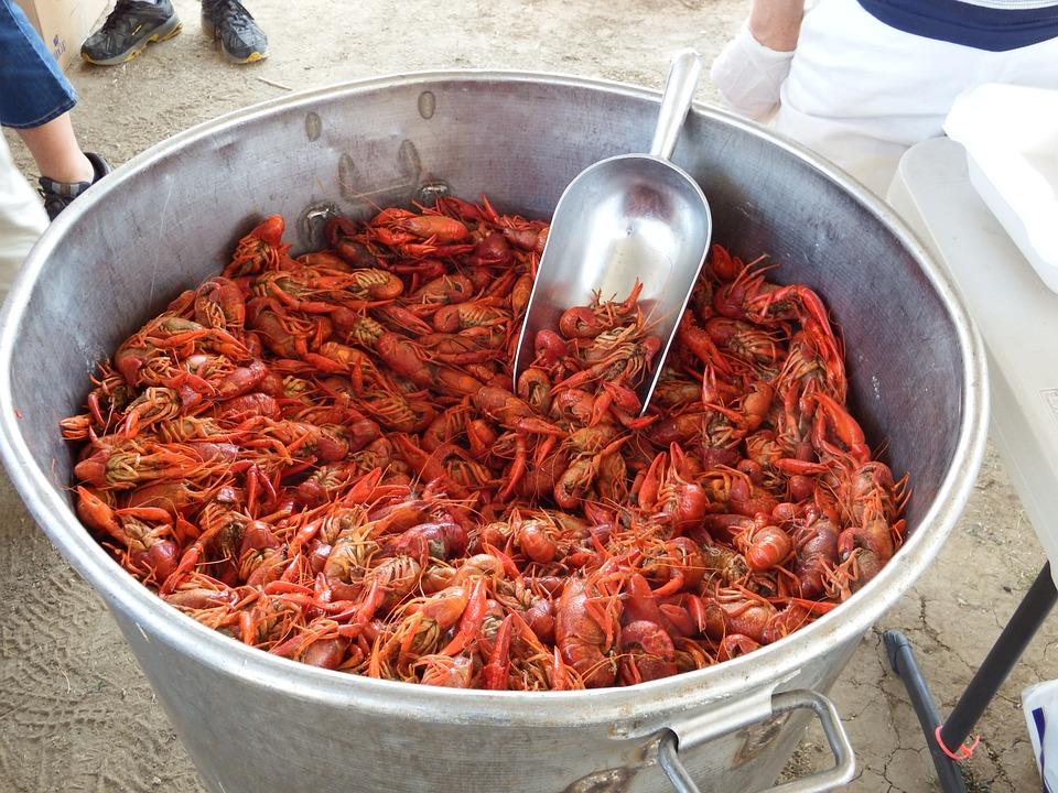 Crawfish, Craw Fish, Craw-fish, Crayfish, Seafood, Red