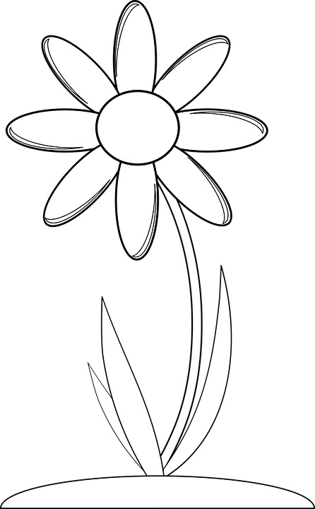 Black And White, Crayon, Monochrome, Simple Flower
