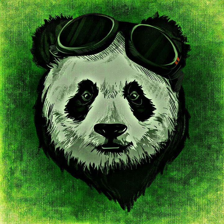 Panda, Animal, Wild, Abstract, Creative