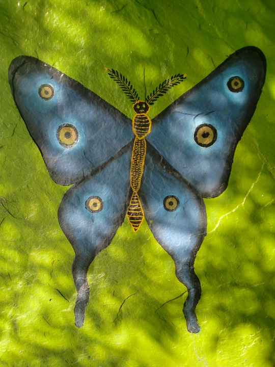 Butterfly, Blue, Green, Painting, Light, Creativity