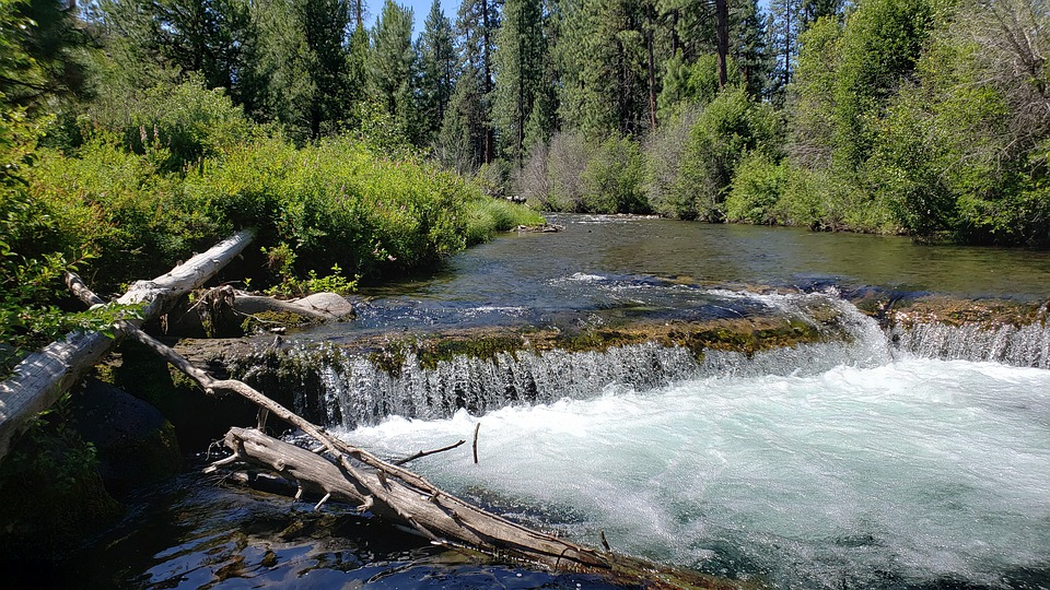 Creek, Water, Waterfall, Log, Tumalo Creek, Nature