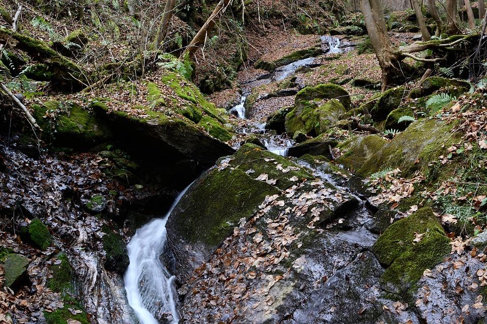 Teigitsch, Bach, Nature, Styria, Creek