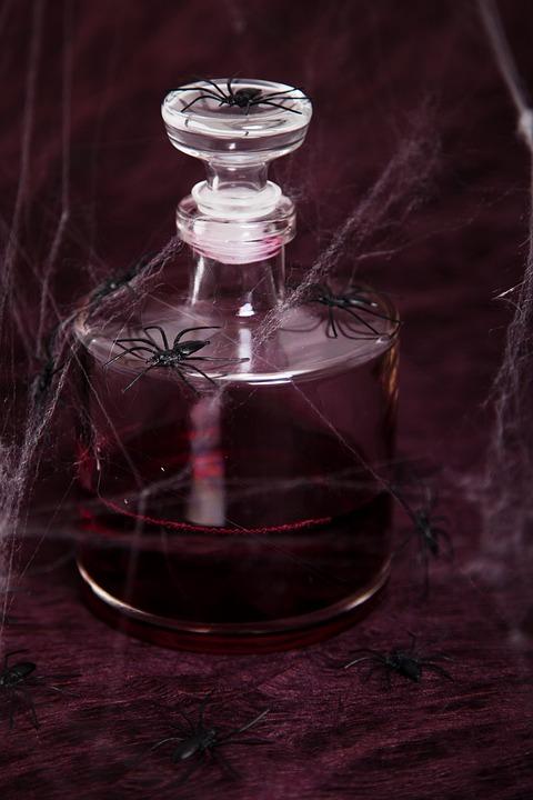 Animal, Arachnophobia, Black, Blood, Bloody, Creepy