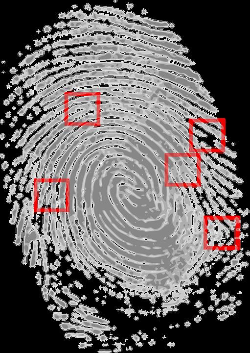 Fingerprint, Detective, Criminal, Evidence, Crime Scene