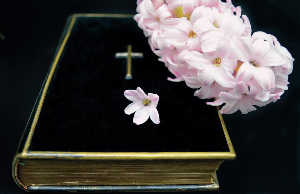 Book, Bible, Hyacinth, Believe, Cross, Christian