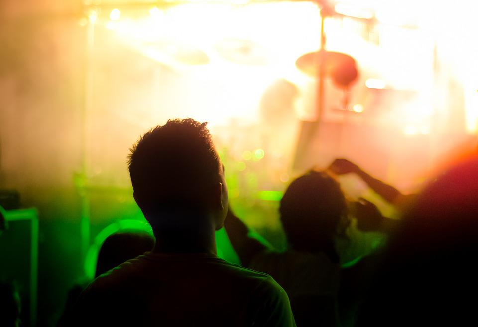 Spectator, Concert, Crowd, Event, Music, Audience