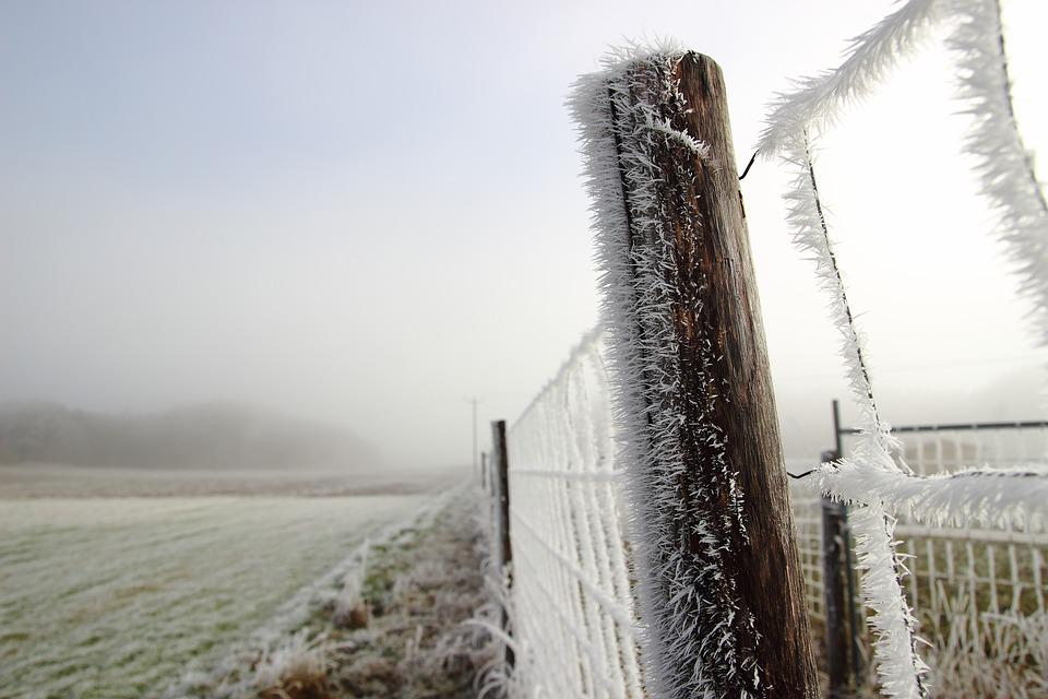 Winter, Ice, Cold, Frost, Crystals, Wintry, Landscape