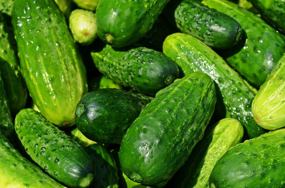 Cucumbers, Vegetables, Eating, Kitchen