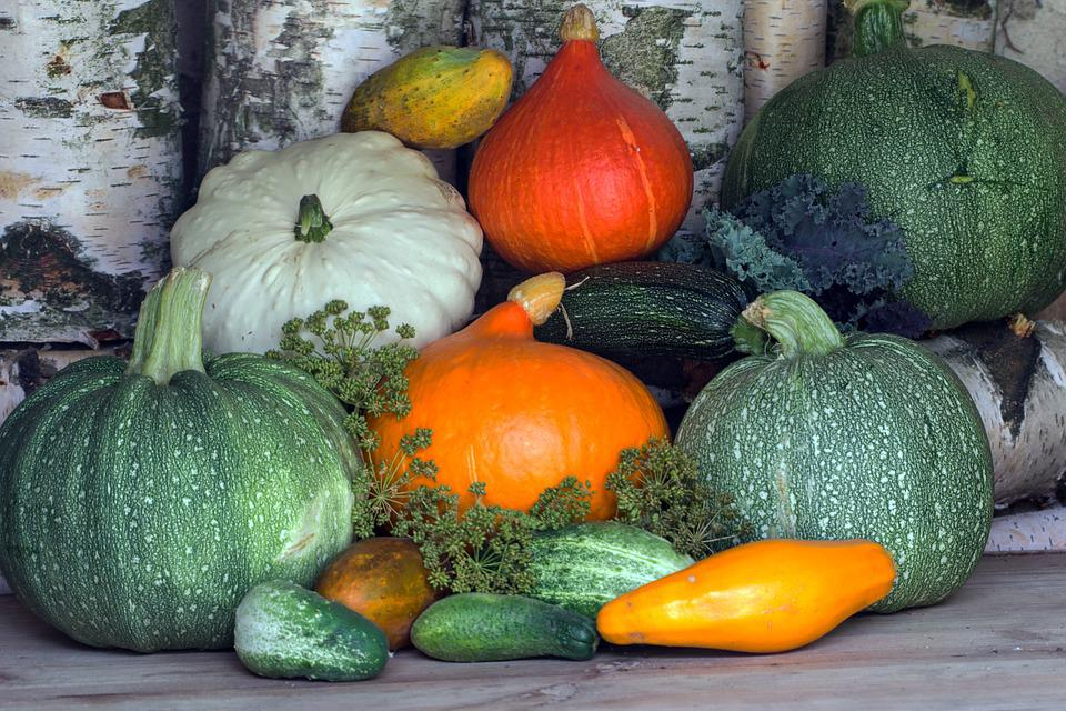 Vegetables, Pumpkins, Zucchini, Harvest, Cucumbers
