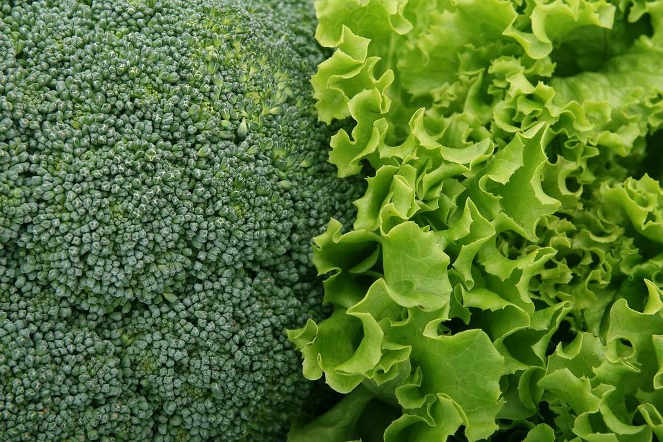 Broccoli, Salad, Green, Culinary, Food, Fresh