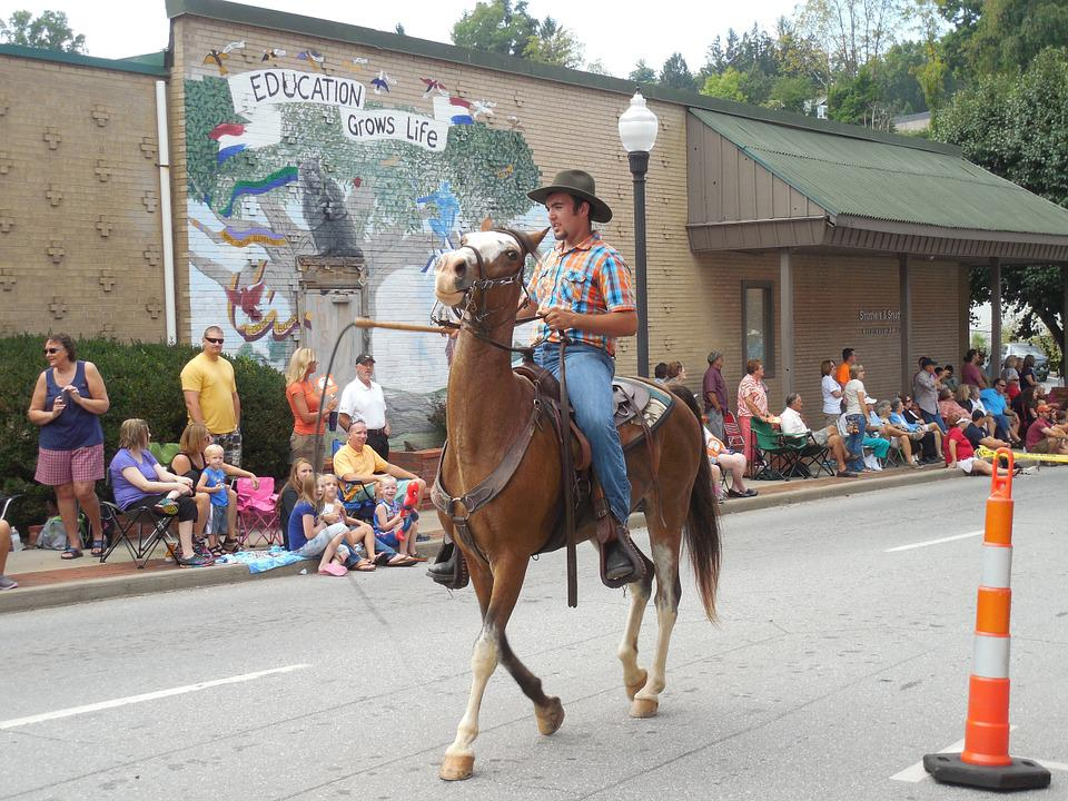 Horse, Parade, Tradition, Culture, Party, History
