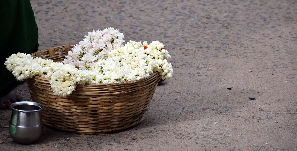 Jasmine, Madurai, Flower, Seller, Traditional, Culture