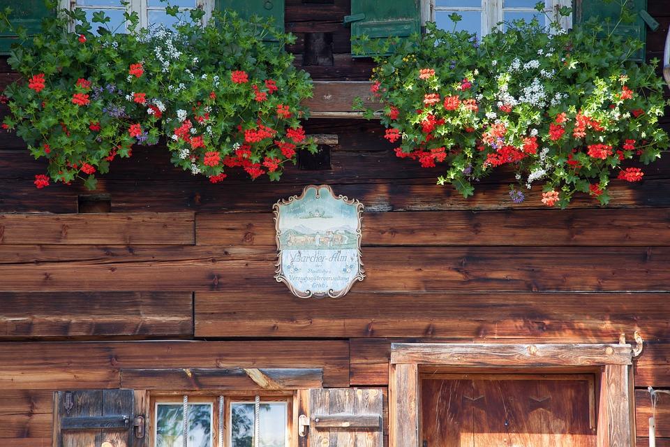 Alm, Shield, Flowers, Flower Boxes, Culture