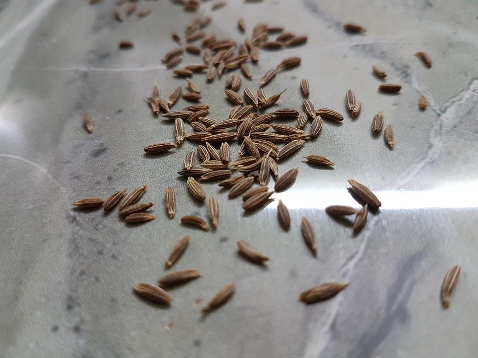 Cumin Seeds, Spices, Seeds