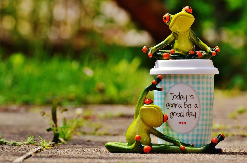 Free Photo Cup Happy Frog Coffee Joy Happiness Beautiful Day Max Pixel