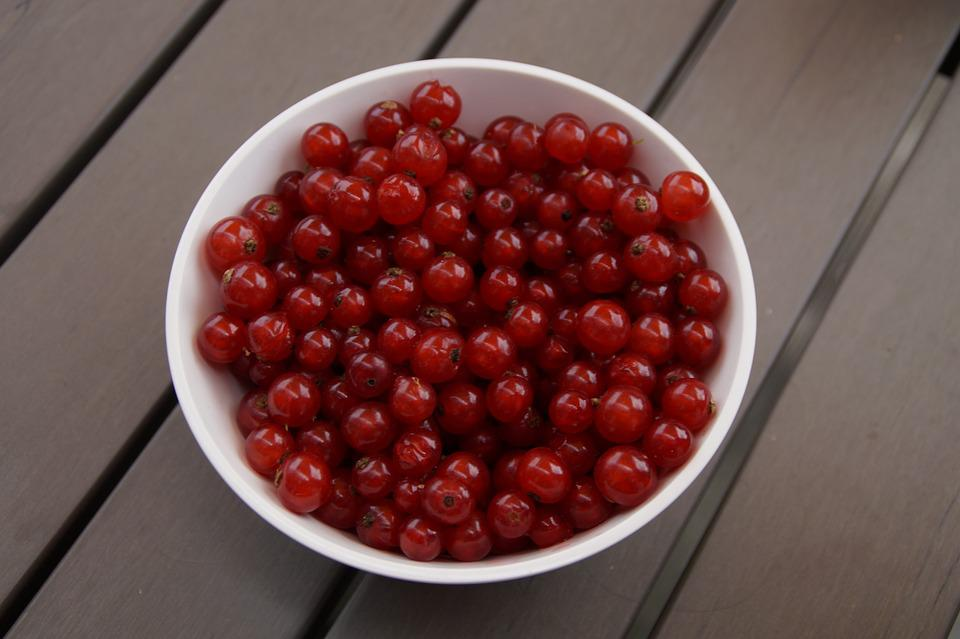 Currants, Berries, Bowl, Fruit, Red, Red Currant