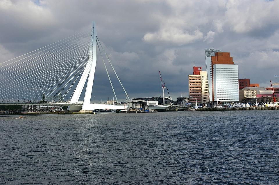 Rhine, River, Current, Bridge, Suspension Bridge
