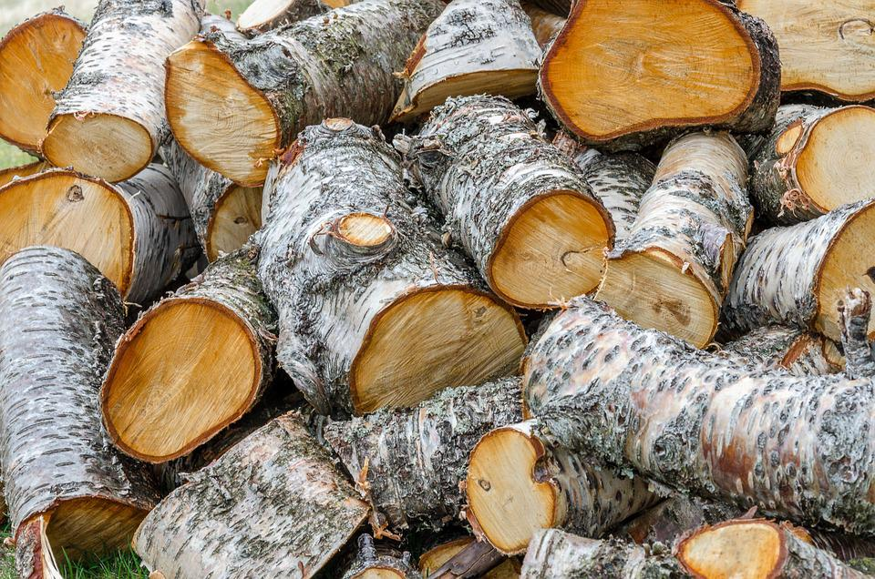 Pile, Firewood, Log, Material, Cut, Woodpile, Rough