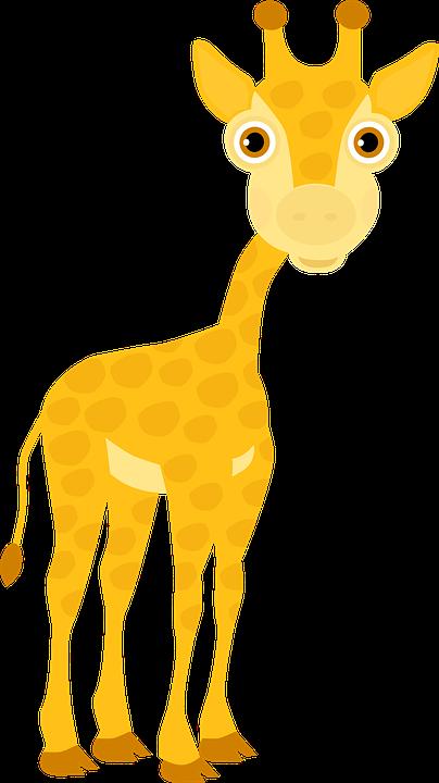 Giraffe, Cub, Zoo, Africa, Safari, Herd, Cute